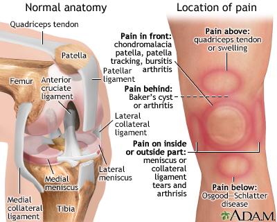 Knee Pain Penn Medicine